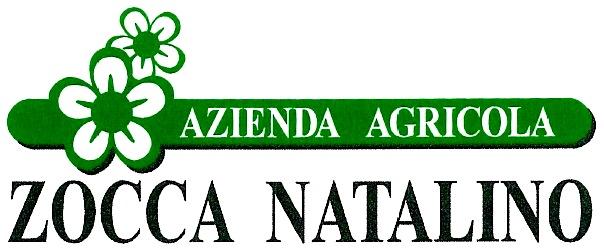 Zocca Natalino